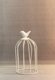 birdcage products